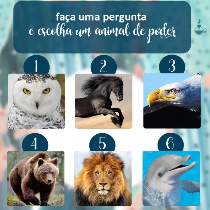animaldepoder_1